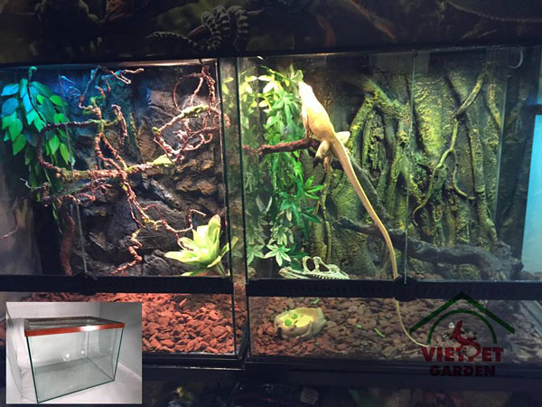 Mẫu chuồng nuôi rồng ở cửa hàng Việt Pet Garden