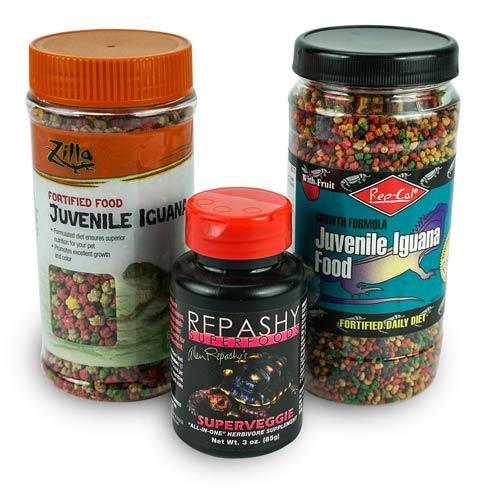 Rồng Nam Mỹ cũng có thể ăn được các loại thức ăn được chế biến khô dành riêng cho chúng