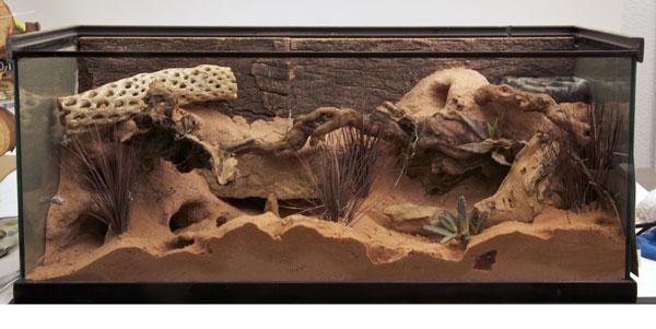 Hình ảnh chuồng sử dụng đất tạo hang Excavator zoomed