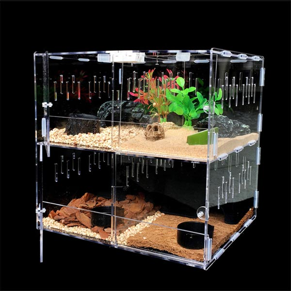 Mẫu bể nuôi rùa cạn size mini