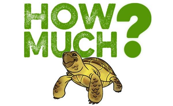Giá bán của rùa nước phụ thuộc chủ yếu vào loài, kích thước, màu sắc, tình trạng sức khỏe.